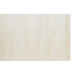 Birch Plywood 2/2 3mm A3...